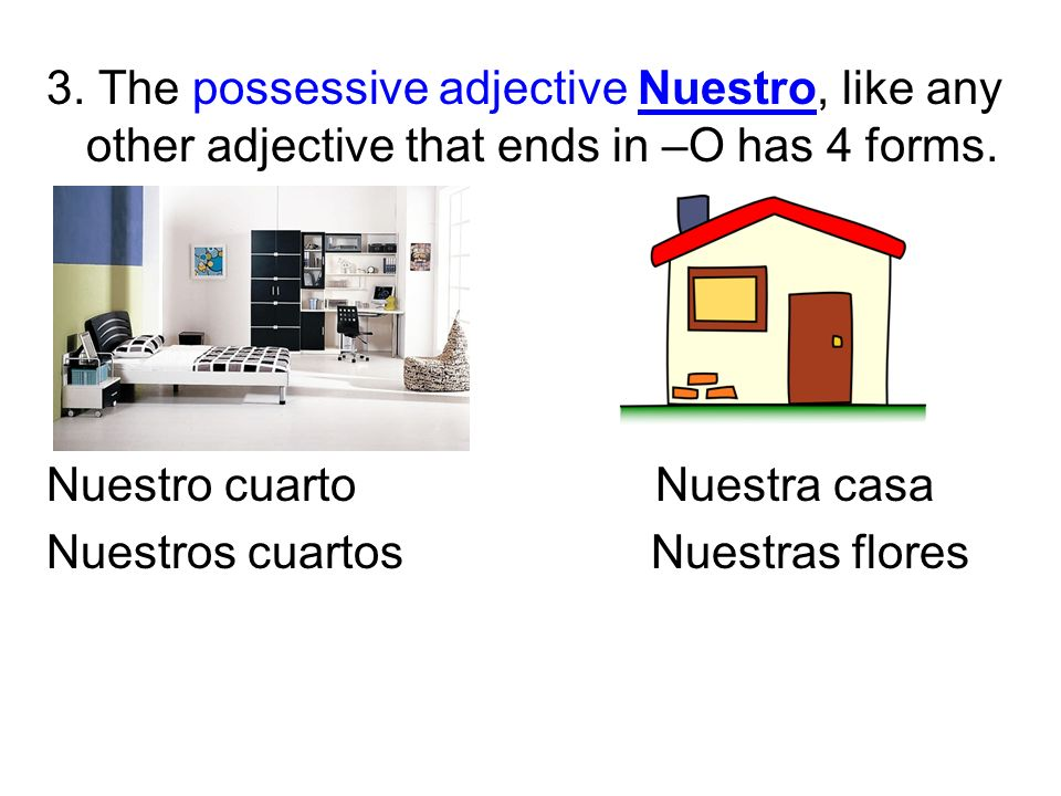 3. The possessive adjective Nuestro, like any other adjective that ends in –O has 4 forms.