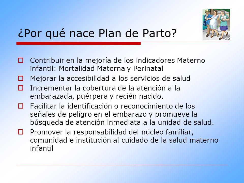 41d21d801 Plan de Parto para la Maternidad Segura. - ppt video online descargar