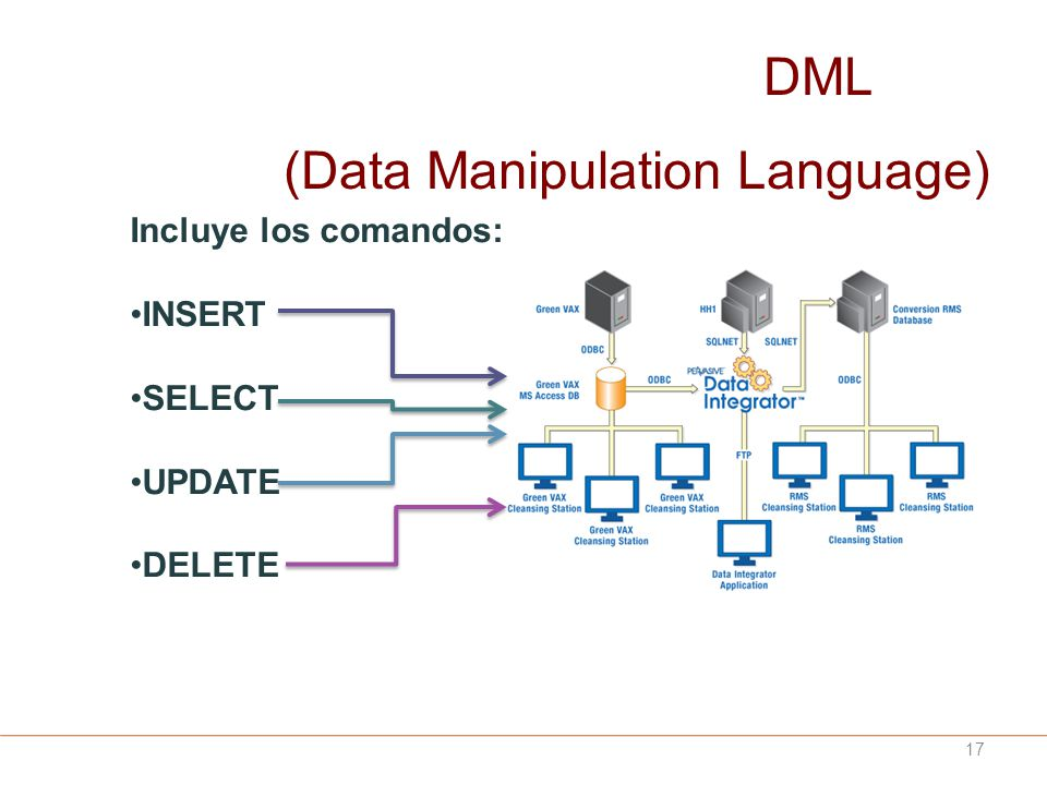 (Data Manipulation Language)