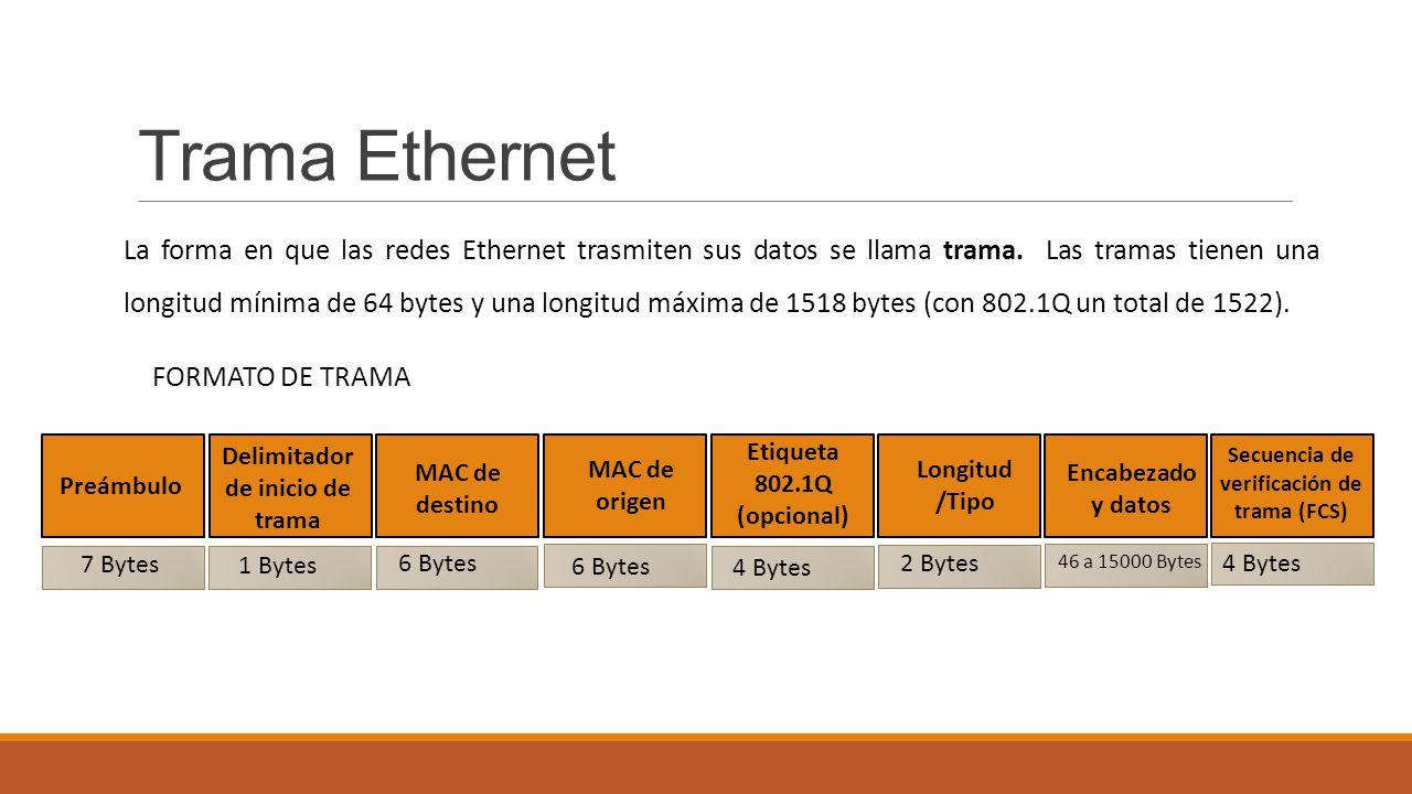 Dorable Formato De Trama Ethernet Adorno - Ideas Personalizadas de ...