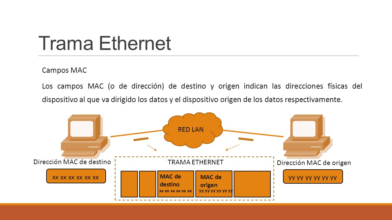Trama Ethernet Campos MAC