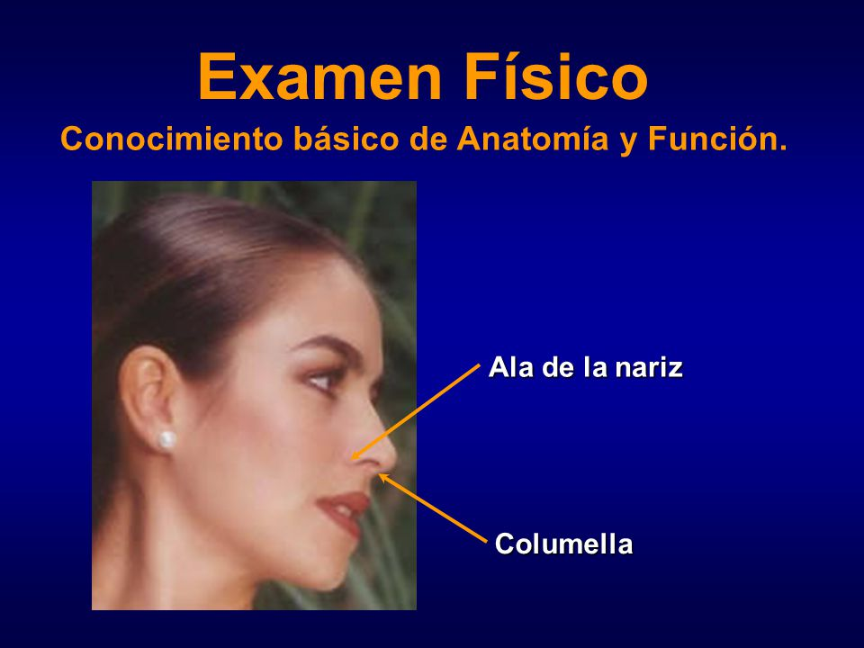 Examen Físico Nasal. - ppt video online descargar