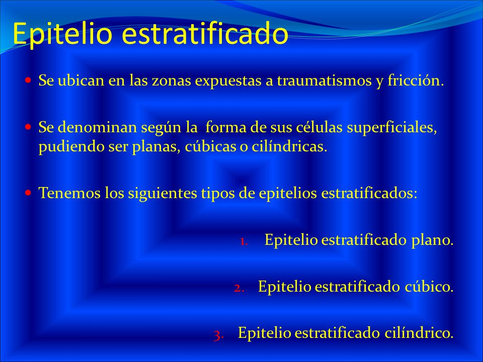 Epitelio estratificado