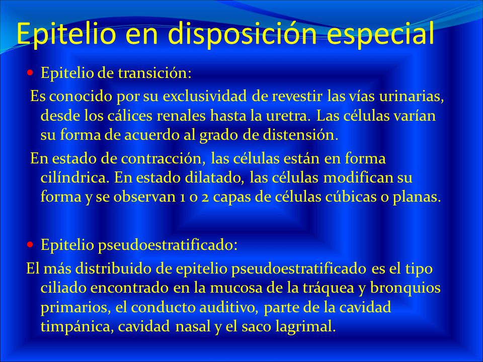 Epitelio en disposición especial