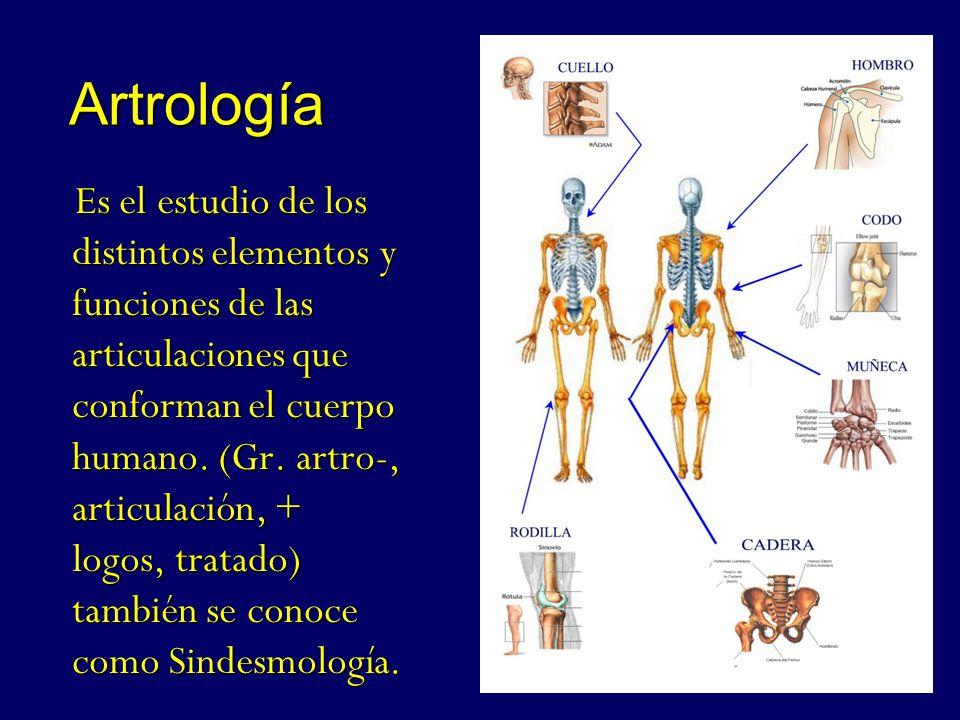 Sistema Articular. - ppt video online descargar