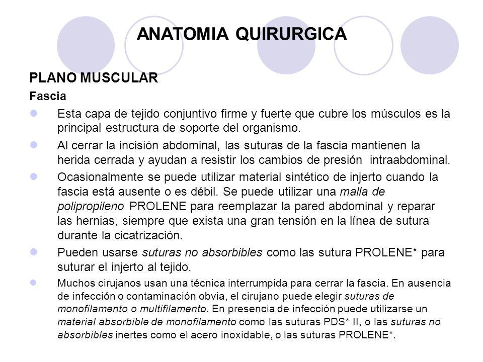 FUNDAMENTOS DE TECNICA OPERATORIA, PLANOS TISULARES, INSTRUMENTAL ...