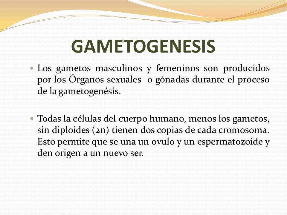 Reproduccion asexual gametogenesis ppt
