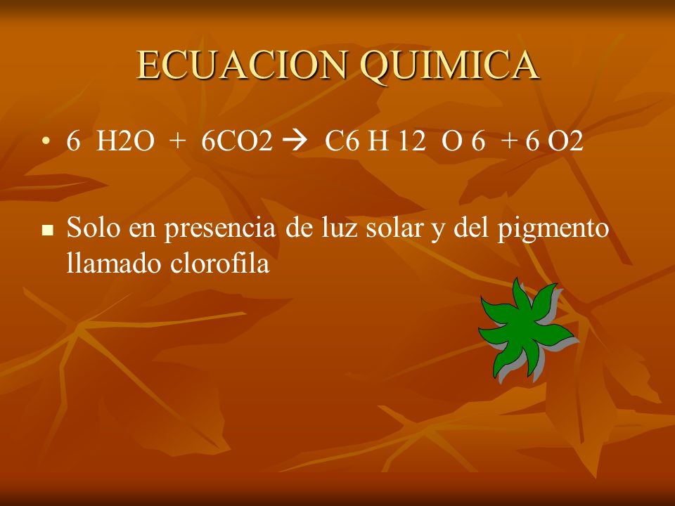 ECUACION QUIMICA 6 H2O + 6CO2  C6 H 12 O O2