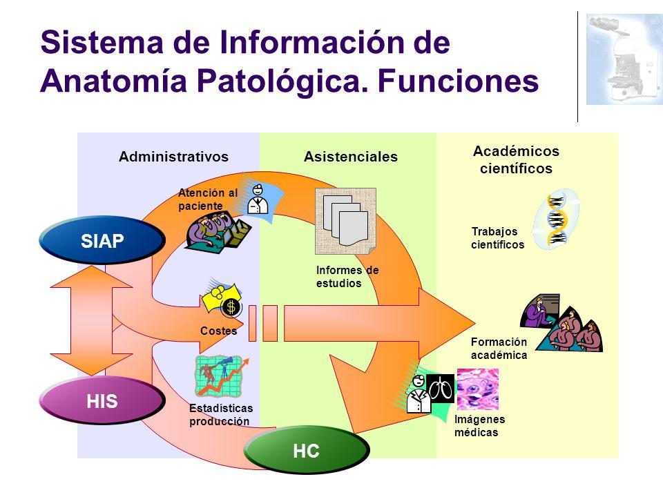 Anatomía Patológica (Patología) en la historia de salud electrónica ...