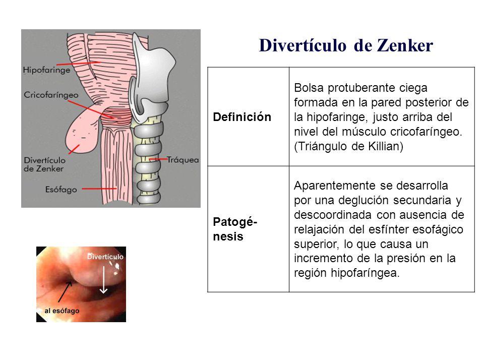 Fisiopatología del esófago - ppt descargar
