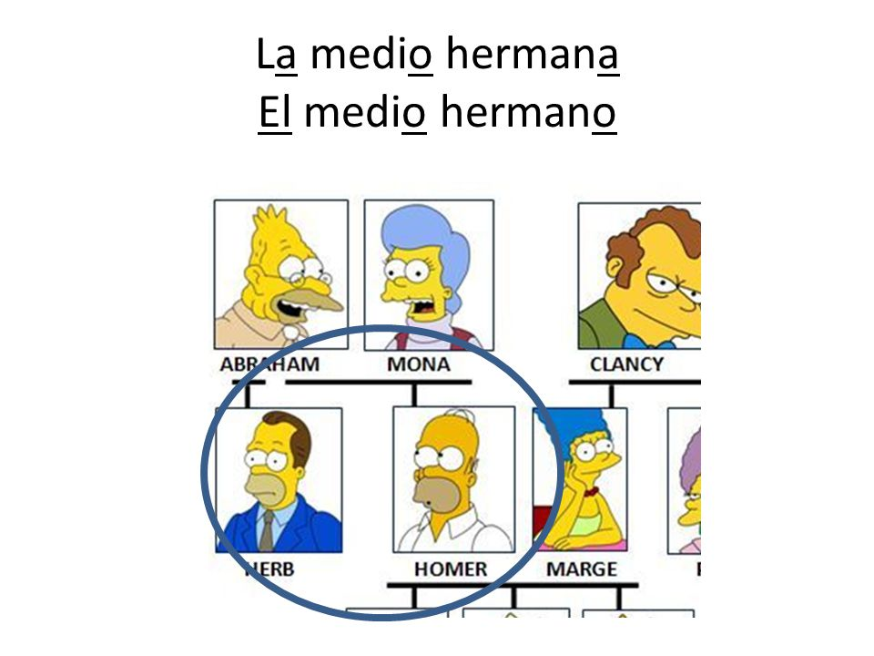 La medio hermana El medio hermano