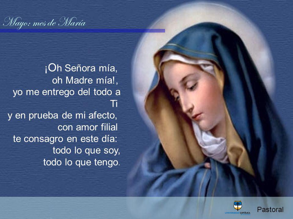 Ave María Mes de Mayo consagrado a la Virgen María. - ppt descargar
