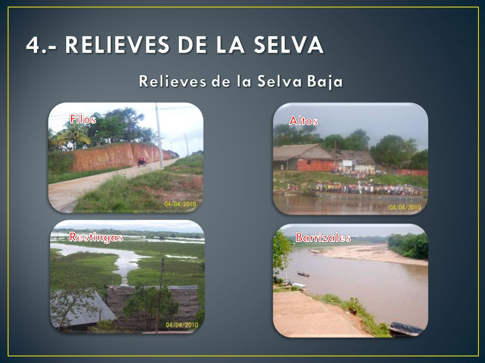4.- RELIEVES DE LA SELVA Relieves de la Selva Baja Filos Altos