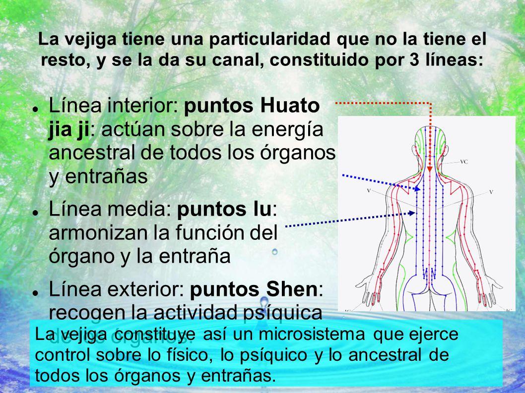 Único Arte Del Uña Con Líneas Y Puntos Ideas - Ideas Para Esmaltes ...