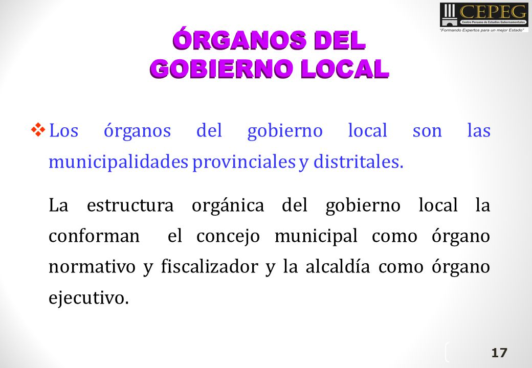 ÓRGANOS DEL GOBIERNO LOCAL