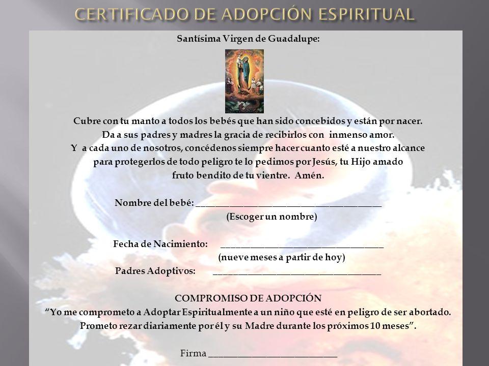 Lujoso Certificado De Adopción Imagen - Cómo conseguir mi nacimiento ...