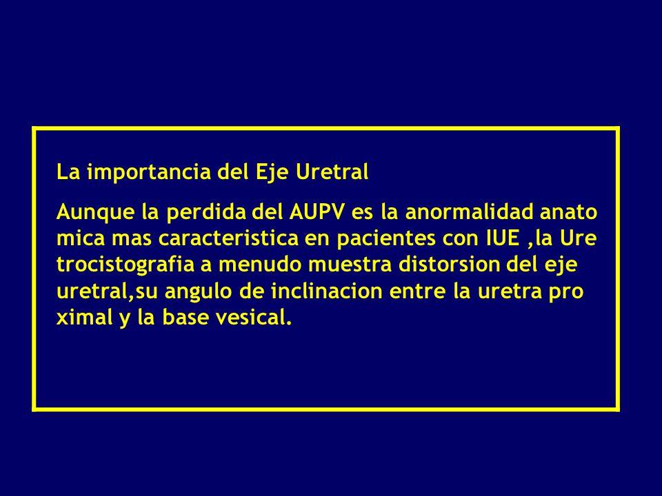 Radiologia de la Incotinencia Urinaria - ppt descargar