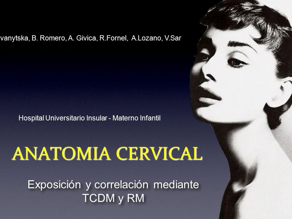 ANATOMIA CERVICAL Exposición y correlación mediante TCDM y RM - ppt ...