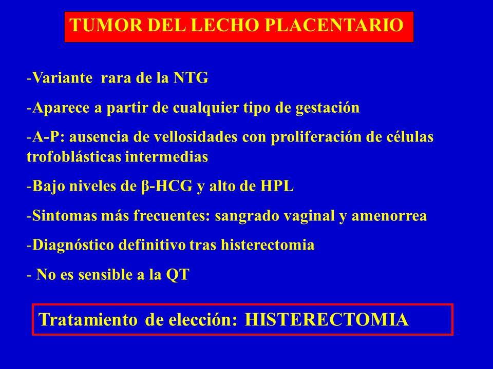 Tumor del sitio placentario diagnostico