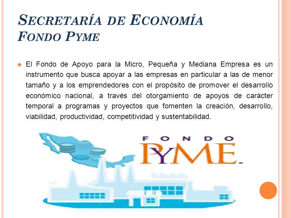Fondo pyme de la secretaria de economia