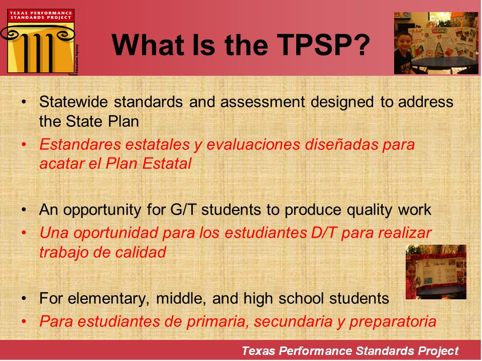 What Is the TPSP Statewide standards and assessment designed to address the State Plan.