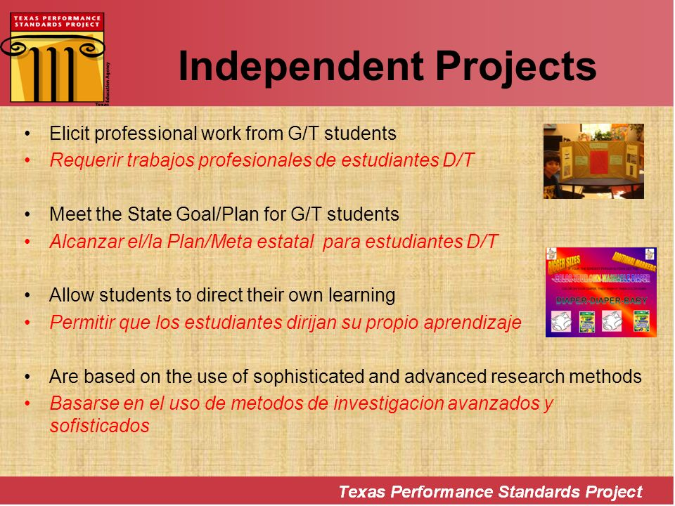 Independent Projects Elicit professional work from G/T students