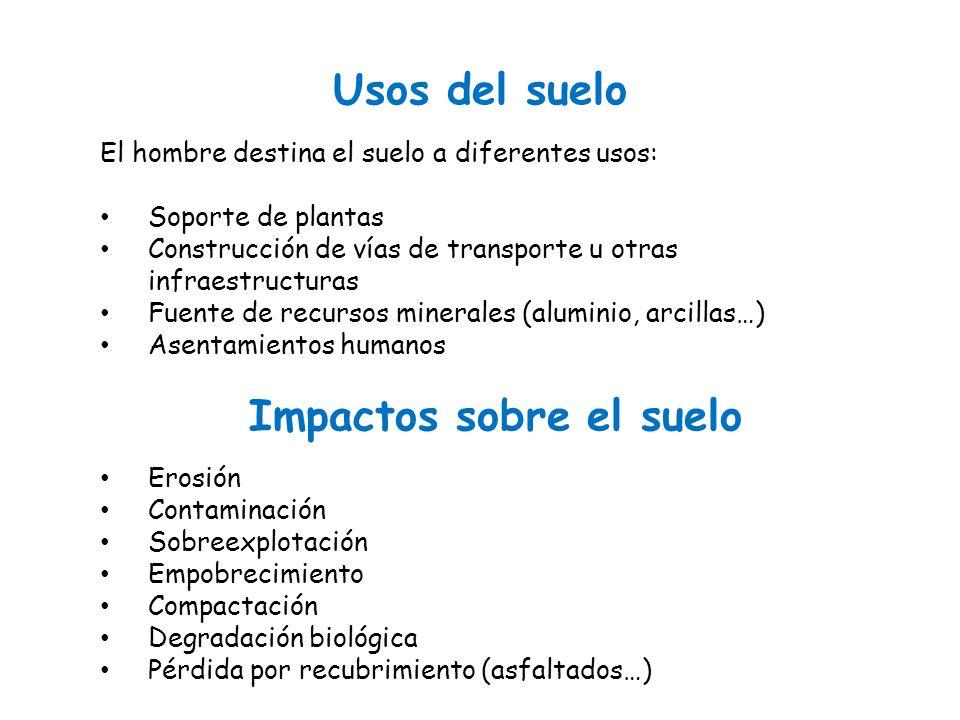 Tema 6 1 el suelo 1 concepto 2 descripci n composici n for 4 usos del suelo en colombia