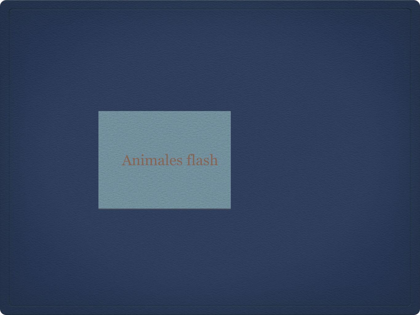 Animales flash