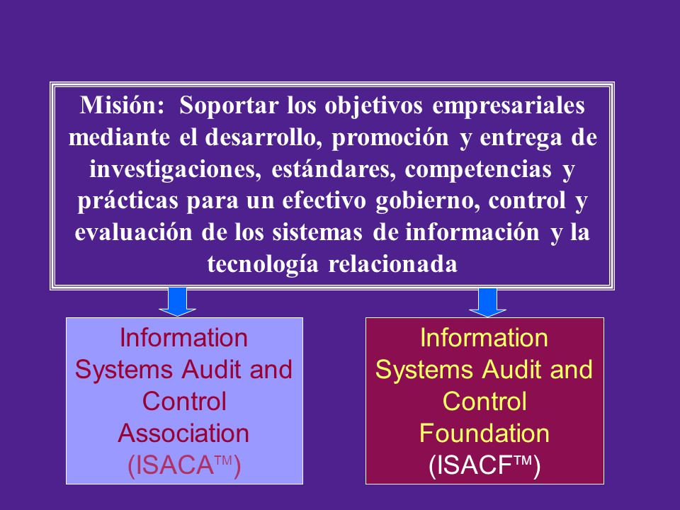 Information Systems Audit and Control Association