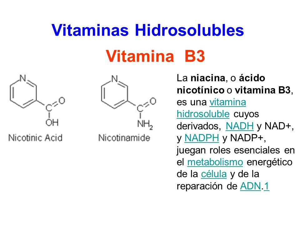 Química Orgánica Dra Yelitza García Ppt Video Online Descargar