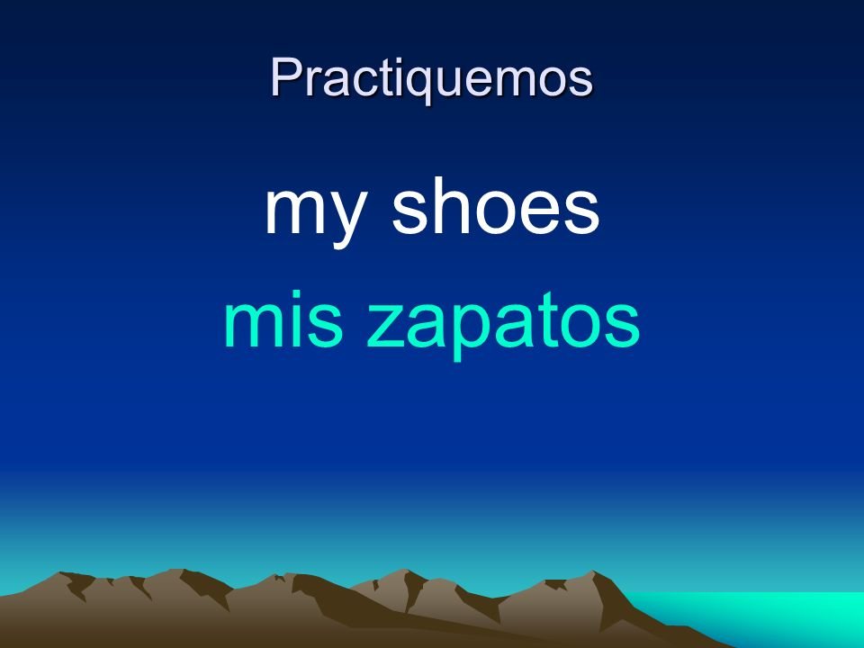 Practiquemos my shoes mis zapatos