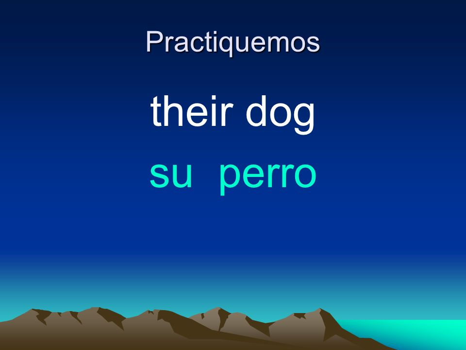 Practiquemos their dog su perro