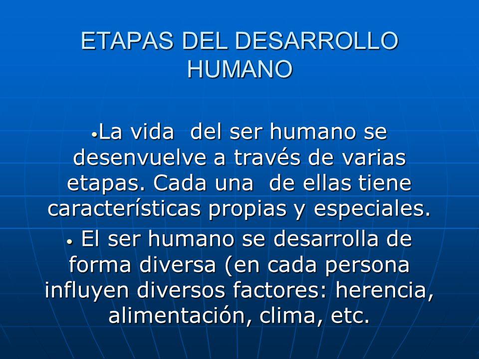 0e7bb8708 ETAPAS DEL DESARROLLO HUMANO - ppt video online descargar