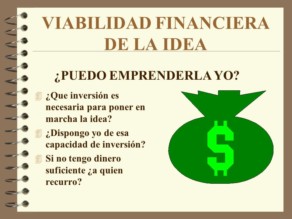 VIABILIDAD FINANCIERA DE LA IDEA