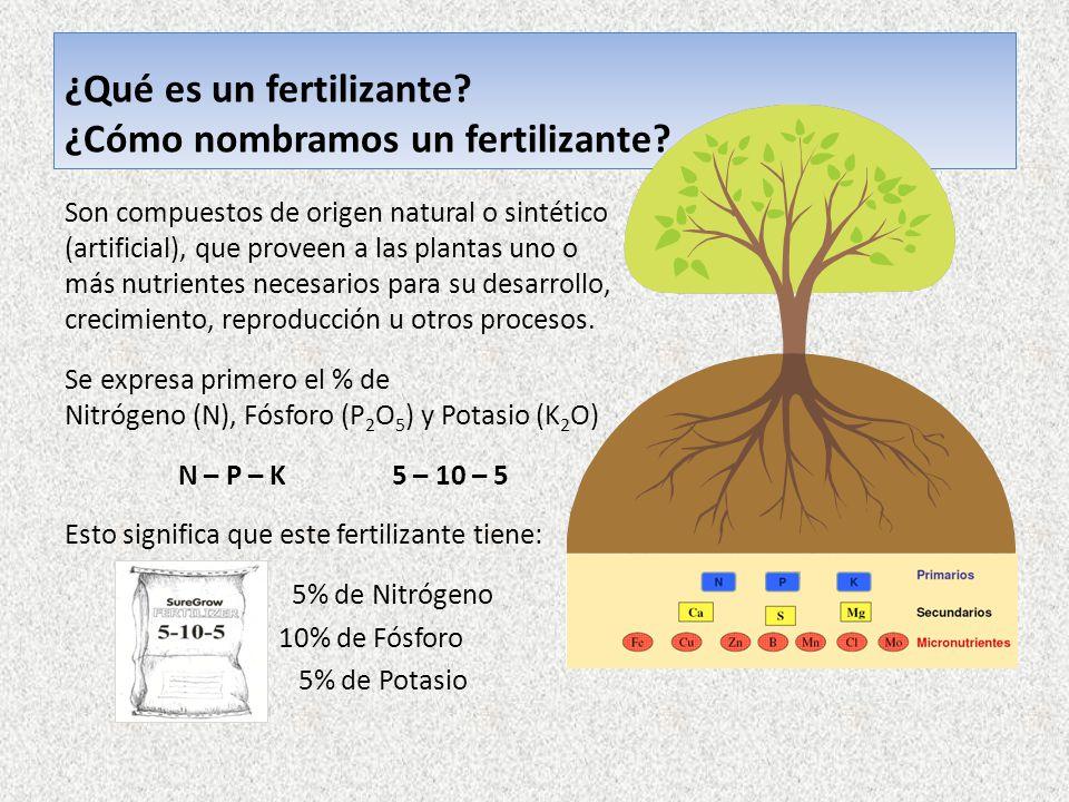 Fertilizaci n nutrici n y las deficiencias nutricionales for Un fertilizzante
