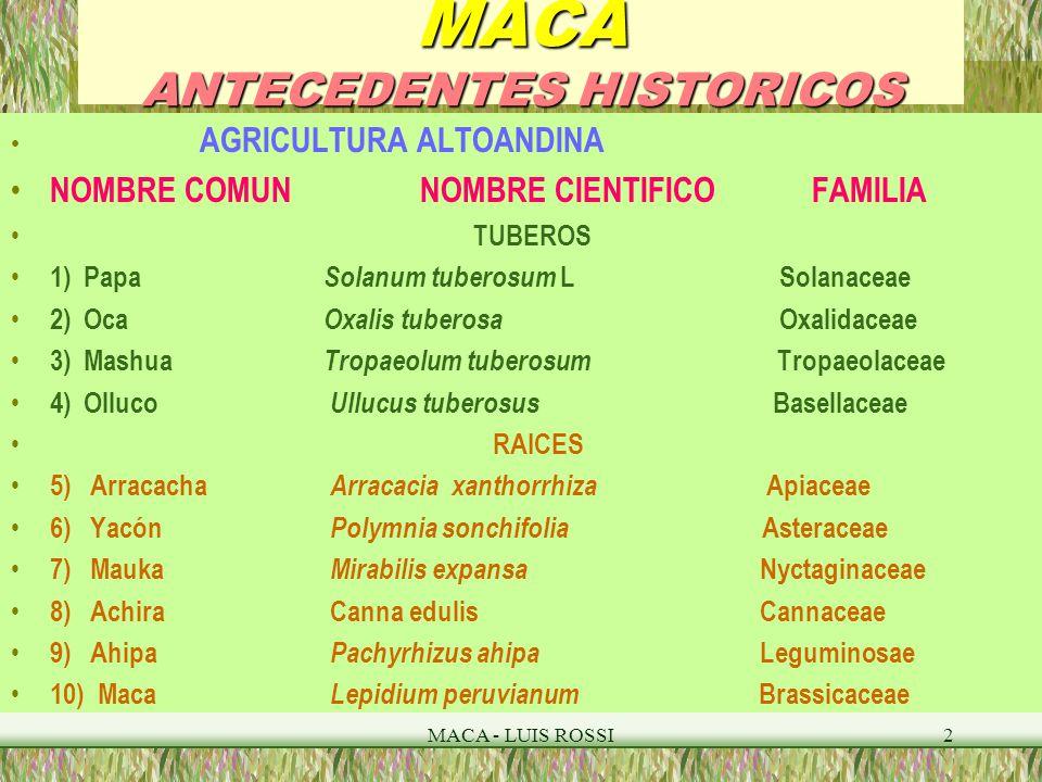 Maca introduccion peru diversidad biologica plantas for Plantas ornamentales del peru