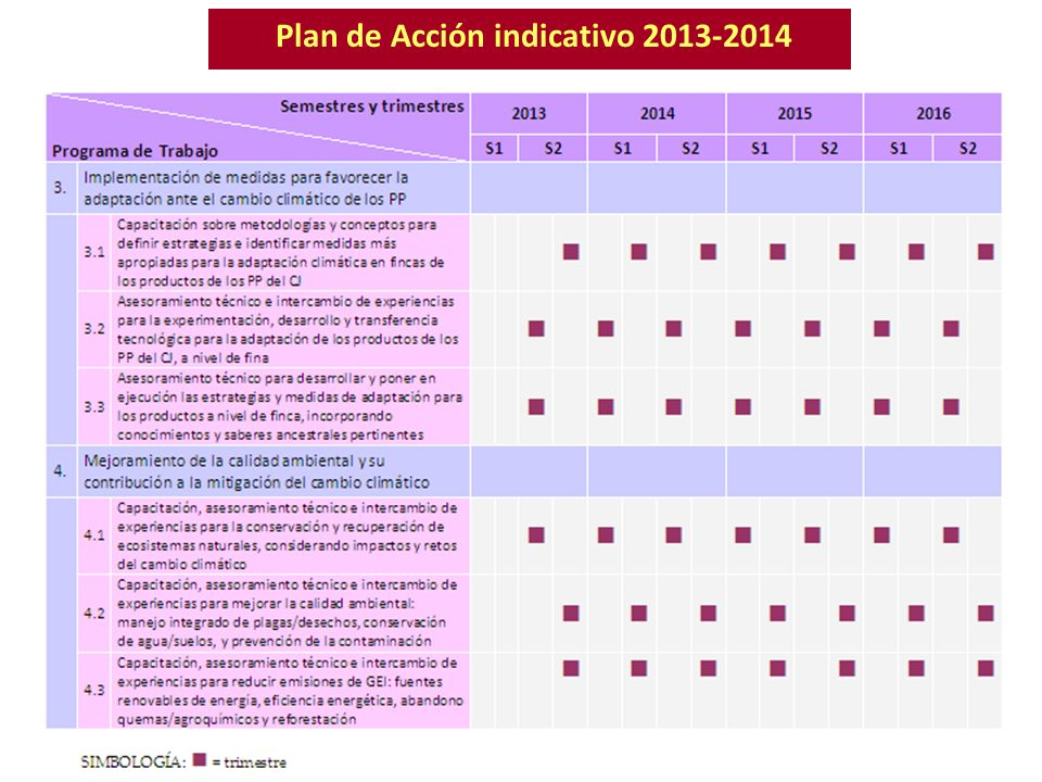 Plan de Acción indicativo