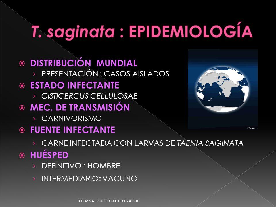 a teniasis epidemiológiája