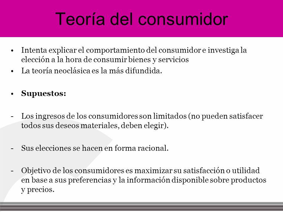Supuestos de la teoria del consumidor