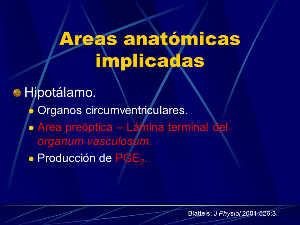 Areas anatómicas implicadas