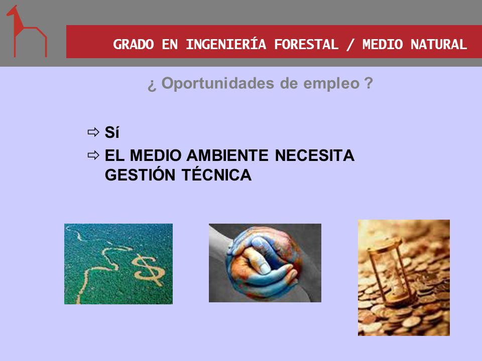 GRADO EN INGENIERÍA FORESTAL / MEDIO NATURAL