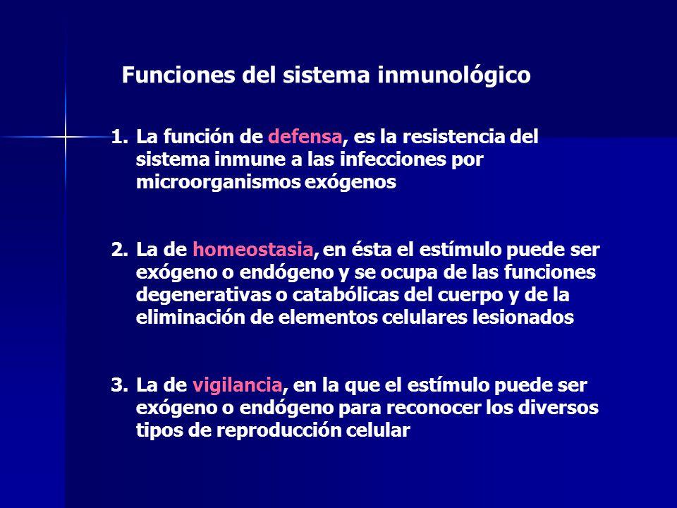 Magnífico Principales Funciones Del Sistema Inmune Patrón - Imágenes ...