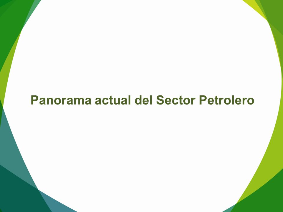 Panorama actual del Sector Petrolero