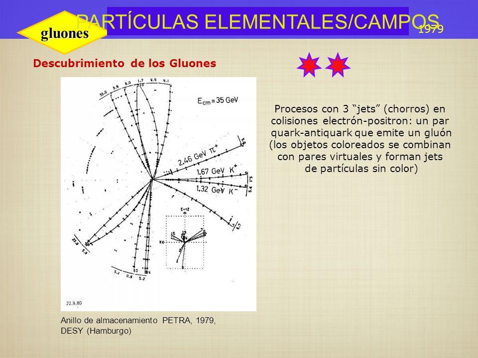 Resultado de imagen de Partículas elementales campos