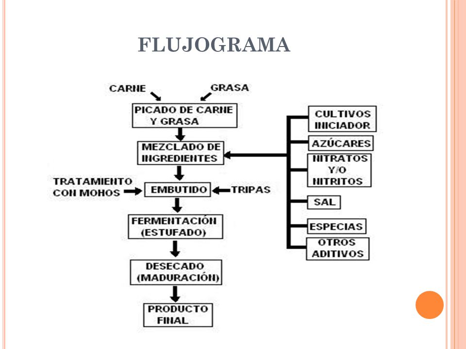 Salami caracter sticas y procesos de producci n ppt for Procesos de produccion de alimentos