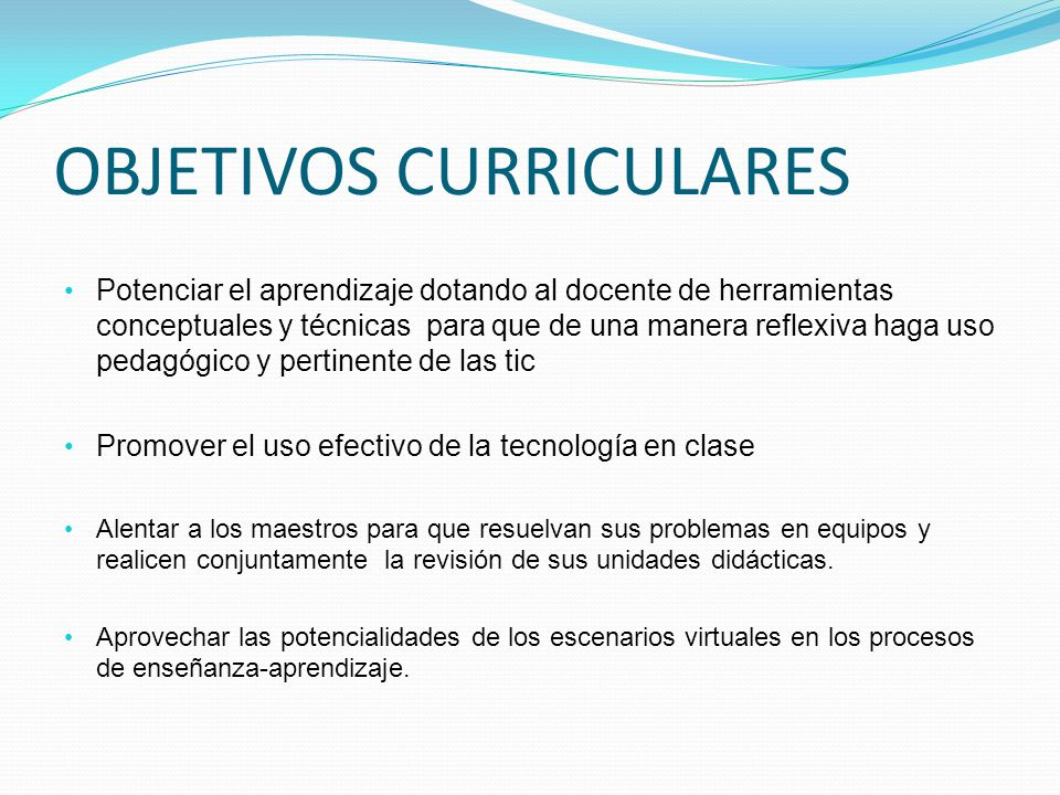 OBJETIVOS CURRICULARES