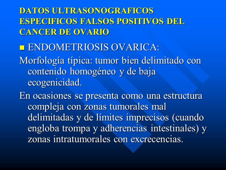 Estudio Ultrasonografico De Las Formaciones Organicas Del