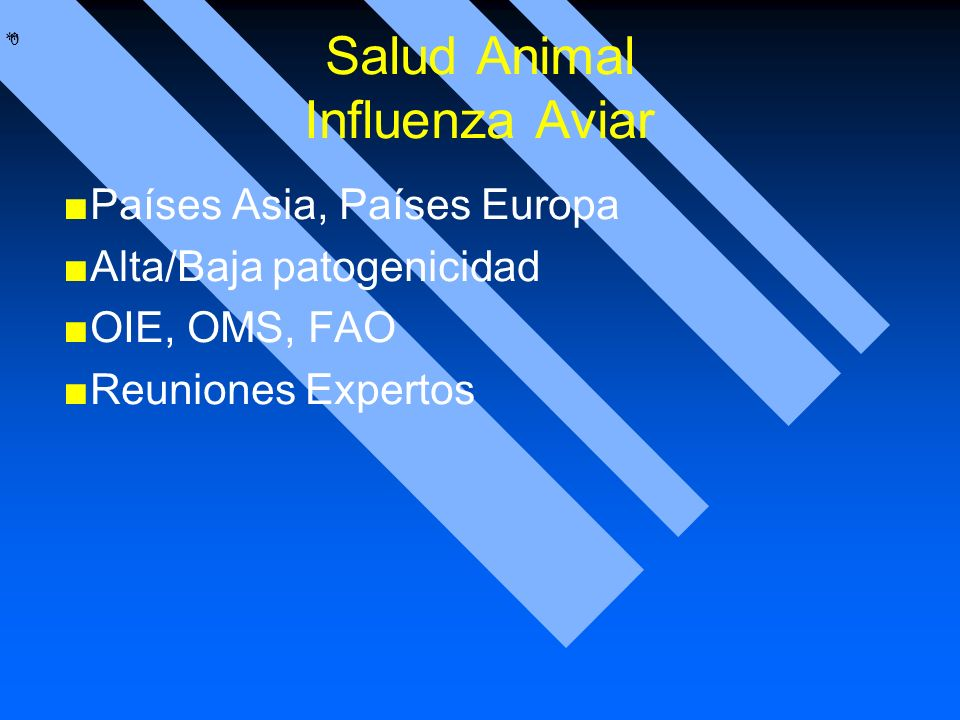 Salud Animal Influenza Aviar