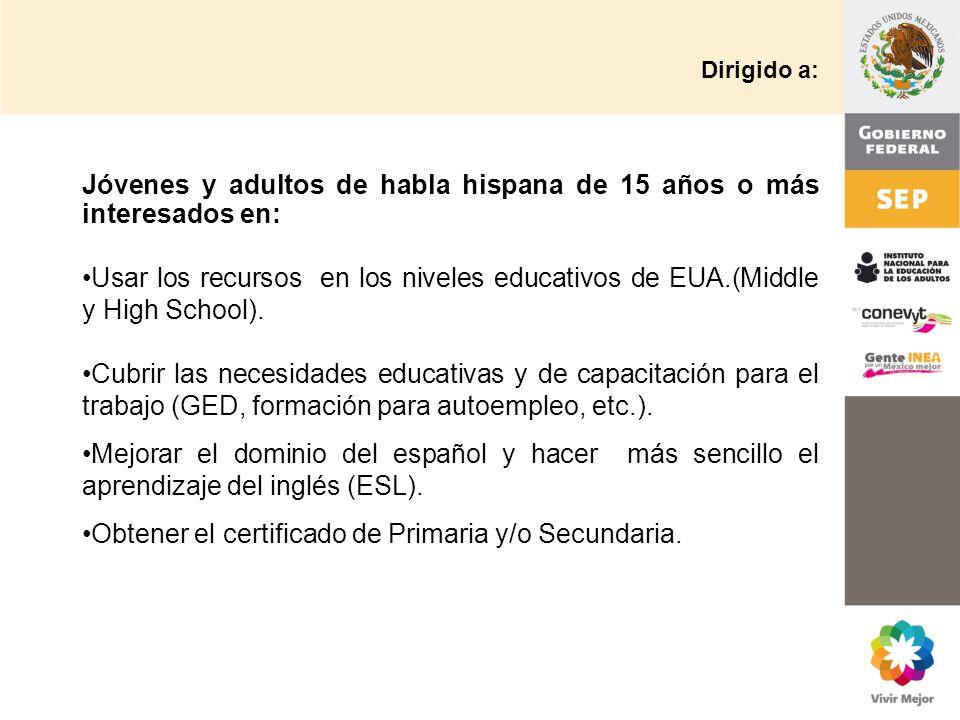 Instituto Nacional Para La Educacion De Los Adultos Inea Mexico
