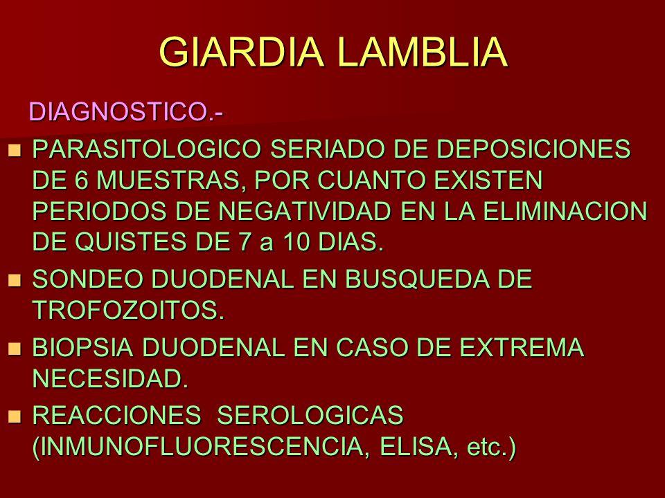 Que es la giardiasis diagnostico Drotfereg fejlodese, Que es la giardiasis diagnostico